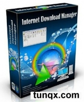 Internet download manager 6.28 build 1 final + retail