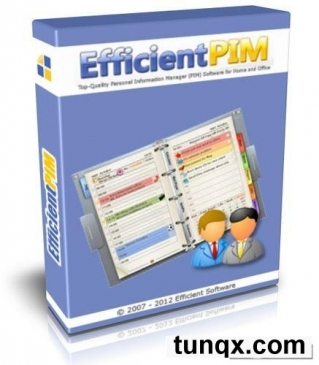Efficientpim pro 3.0 build 317